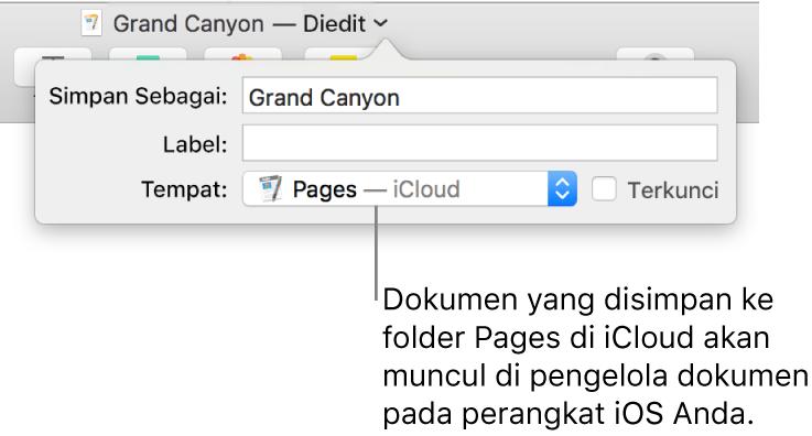 Dialog Simpan untuk dokumen dengan Pages—iCloud di menu pop-up Tempat.