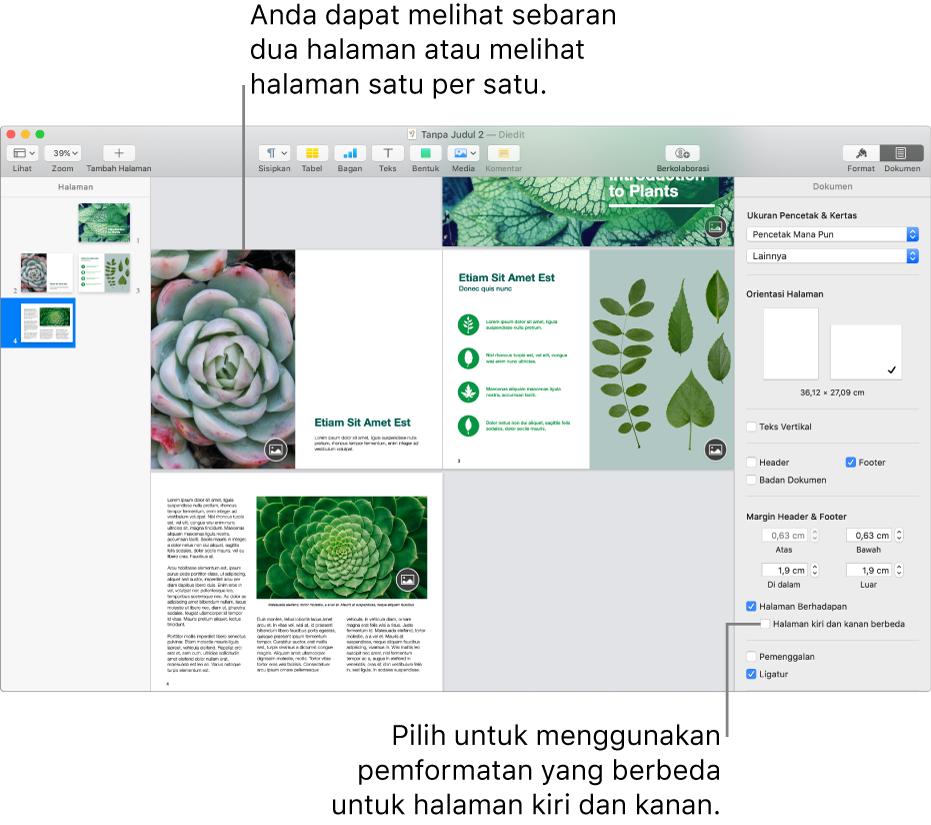 """Halaman Pages dengan gambar mini halaman dan halaman dokumen dilihat sebagai sebaran dua halaman. Di bar samping Dokumen di sebelah kanan, kotak centang """"Halaman kiri dan kanan berbeda"""" dibatalkan pilihannya."""
