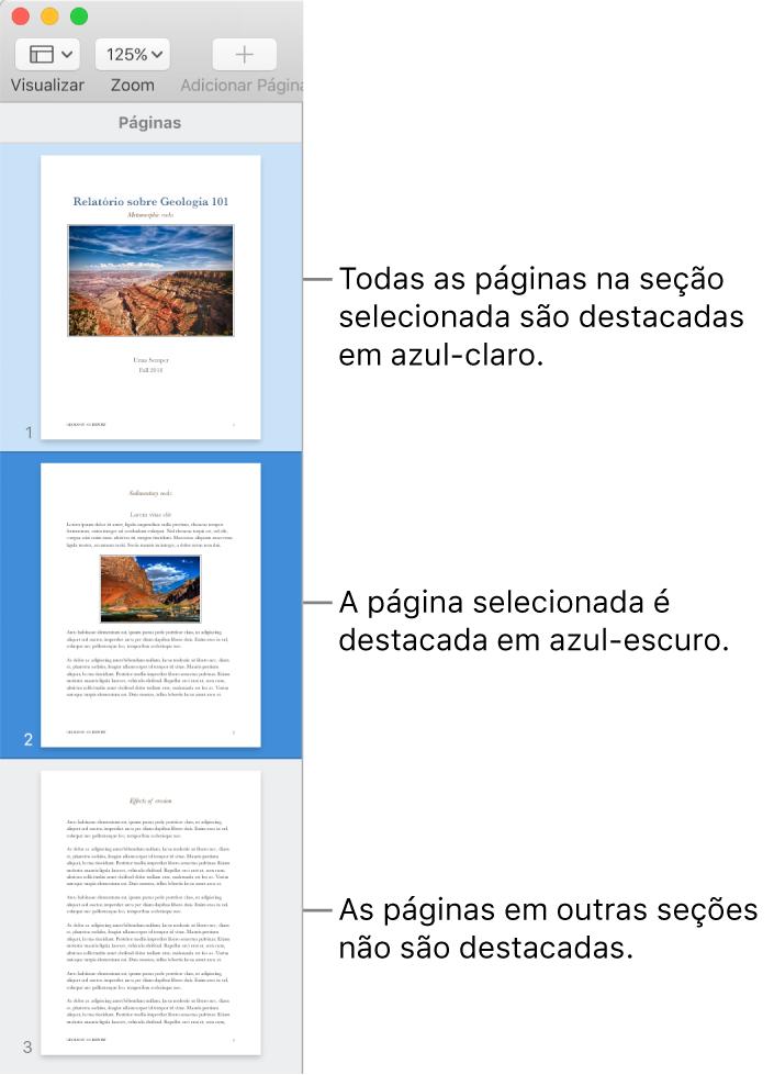Barra lateral Visualização de Miniaturas, com a página selecionada destacada em azul escuro e todas as páginas da seção selecionada destacadas em azul claro.