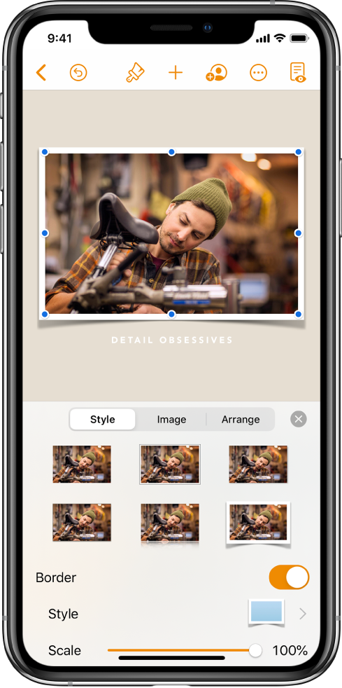 The Format controls for changing the size and appearance of the selected image. Style, Image, and Arrange buttons are across the top of the controls.