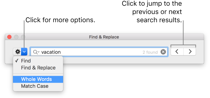 The Find & Replace window with callouts to the button to show options for Find, Find & Replace, Whole Words, and Match Case. Arrows on the right let you jump to the previous or next search results.