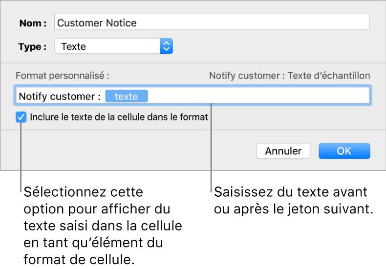Format de cellule texte personnalisé.