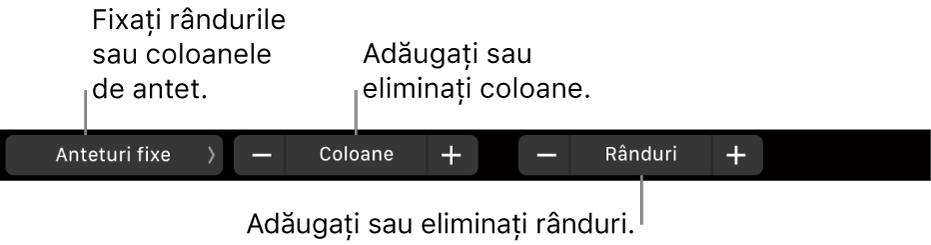 Bara Touch Bar de pe MacBook Pro cu comenzi pentru fixarea rândurilor sau coloanelor de antet, adăugarea sau eliminarea coloanelor și adăugarea sau eliminarea rândurilor.