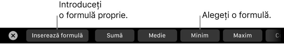 Bara Touch Bar de pe MacBook Pro cu comenzi pentru inserarea unei formule proprii și alegerea unei formule utilizate în mod obișnuit.