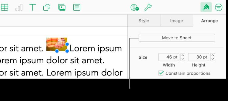 Nella casella di testo è selezionata un'immagine in linea e nel pannello Disposizione della barra laterale è visibile il pulsante Sposta nel foglio.