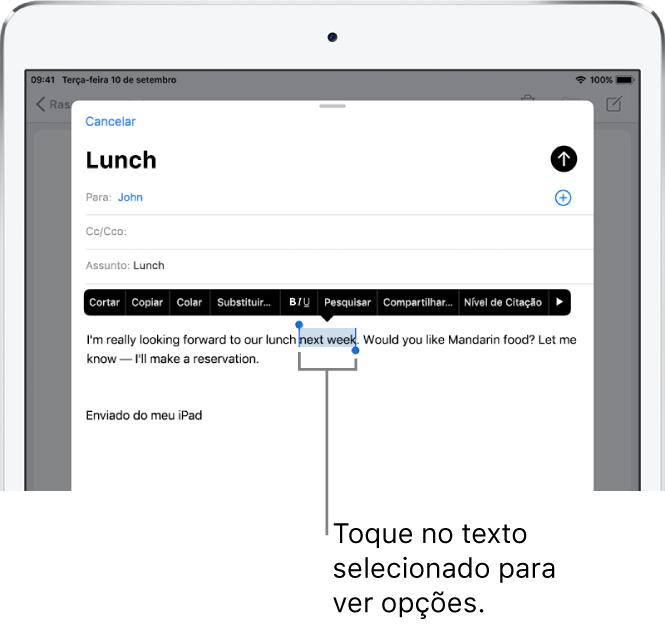 Uma amostra de mensagem de e-mail com parte do texto selecionada. Acima da seleção encontram-se os botões Cortar, Copiar, Colar e Substituir. O texto selecionado está destacado.