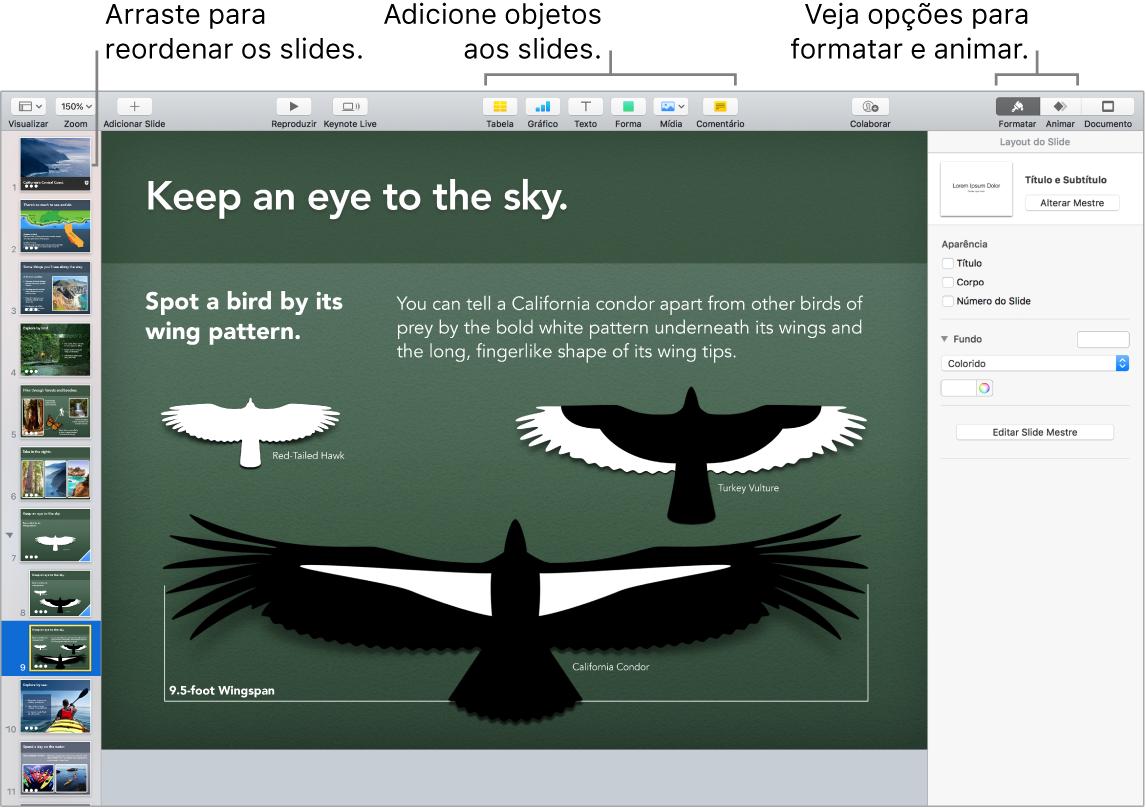 Uma janela do Keynote mostrando como reordenar slides e identificando botões que permitem adicionar objetos aos slides, inclusive opções de formatação e animação.