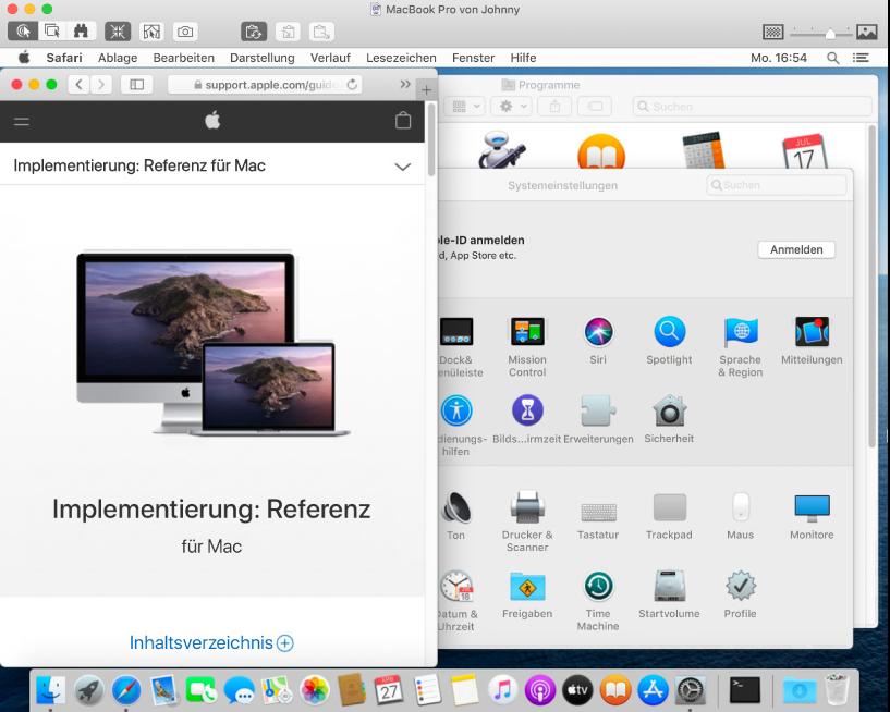 Sie können mehrere Bildschirme anzeigen und jeweils einen Bildschirm steuern.