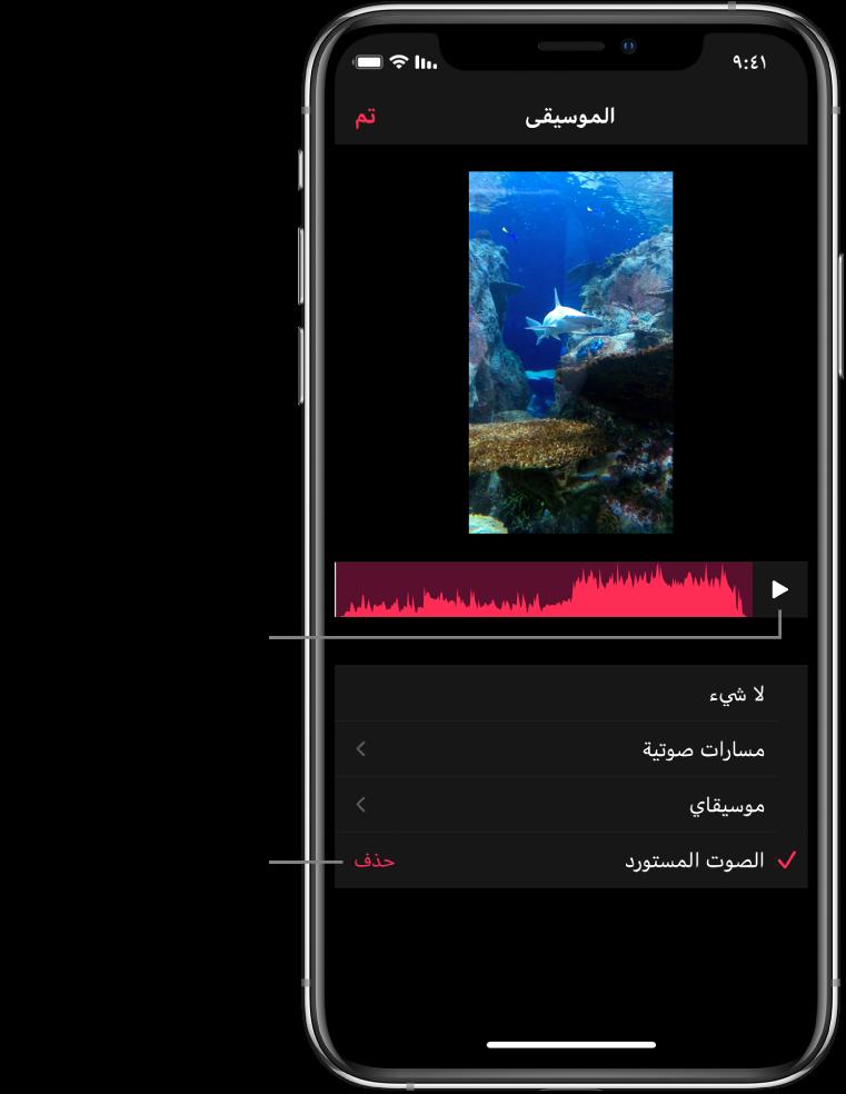 زر تشغيل وشكل موجة صوتية أسفل صورة في العارض، وفي الأسفل زر حذف لإزالة الصوت المستورد.