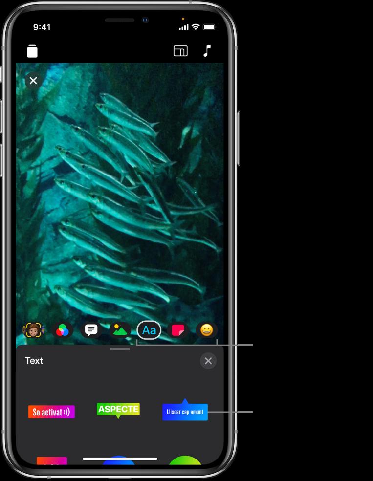 Una imatge de vídeo al visor amb l'opció Text seleccionada i les opcions d'etiqueta de text a la part inferior.