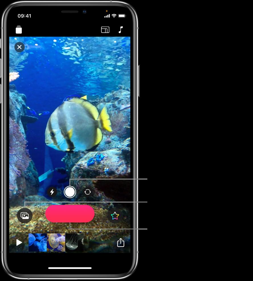 Ein Videobild im Viewer mit darunter angezeigten Kamerasteuerelementen, Aufnahmetaste und Miniaturen von Clips im aktuellen Projekt.