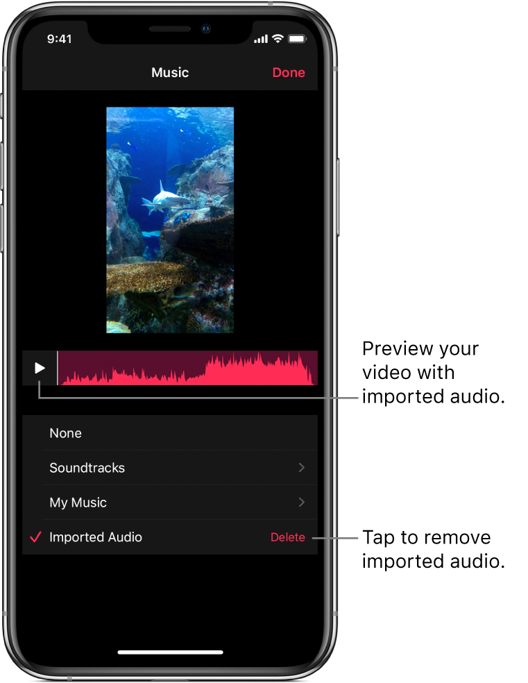 A Play button and an audio waveform below an image in the viewer, with a Delete button below for removing imported audio.