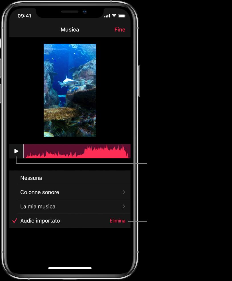 Il pulsante Riproduci e una forma d'onda audio sotto un'immagine nel visualizzatore, con sotto il pulsante Elimina per rimuovere l'audio importato.