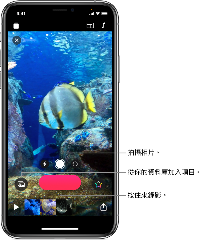 檢視器中的影片影像,其下方為相機控制項目、「錄製」按鈕及目前專案的剪輯片段縮圖。