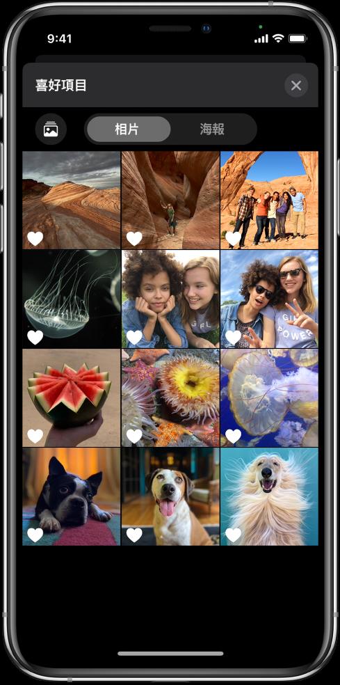 「相片」瀏覽器顯示相片縮圖。
