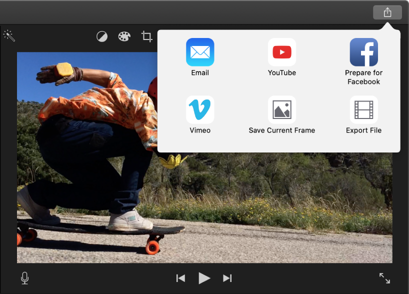 Share button in toolbar above viewer, with share options below
