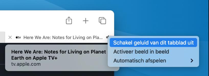 Het submenu van het audiosymbool, met 'Schakel geluid van dit tabblad uit', 'Activeer beeld in beeld' en onderdelen voor automatisch afspelen.