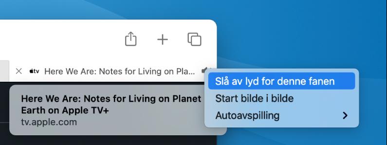 Undermenyen for Lyd-symbolet, med Slå av lyd for denne fanen, Start bilde i bilde og Autoavspilling.