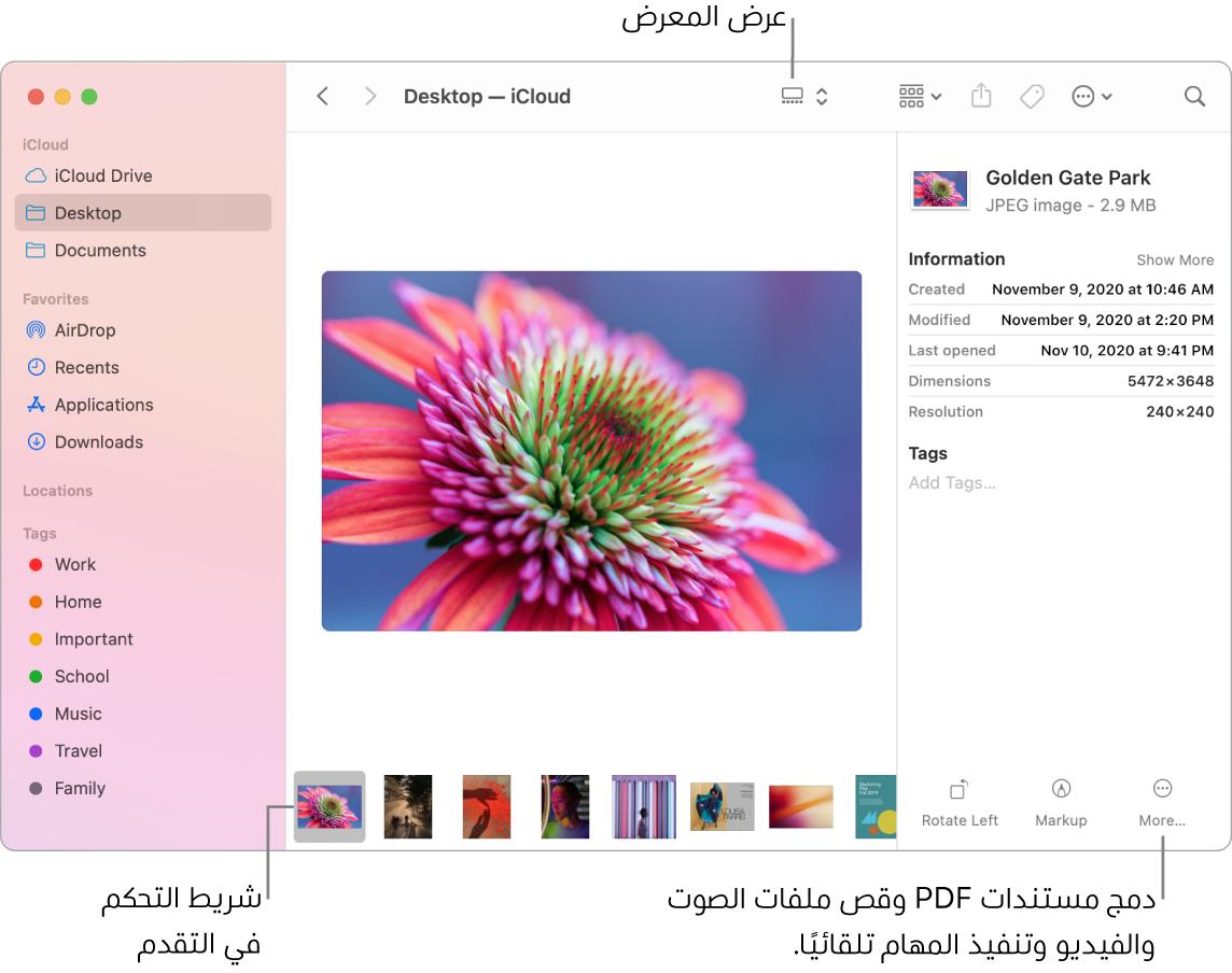 نافذة Finder مفتوحة في عرض المعرض وتظهر فيها صورة كبيرة وأسفلها صف من الصور الصغيرة، وهو شريط التحكم في التقدم. وتظهر على يسار شريط التحكم في التقدم عناصر تحكم للتدوير والتوصيف والمزيد.