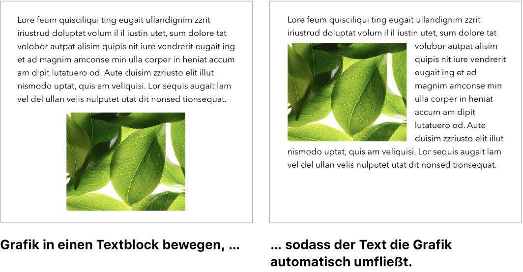 Pages-Fenster mit Grafik, die vom Text umflossen wird.