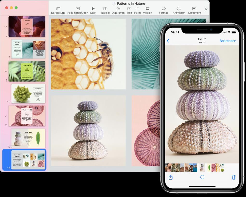 Ein iPhone, auf dessen Bildschirm ein Foto zu sehen ist, und ein Mac, auf dem das Foto in ein Pages-Dokument eingesetzt wird.