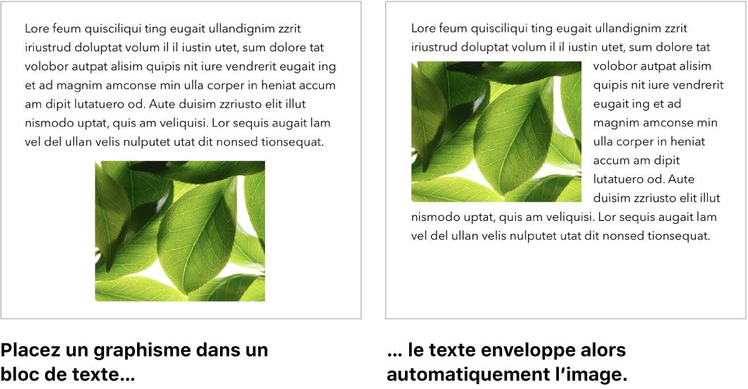 Fenêtre de Pages montrant du texte enveloppant des éléments graphiques.