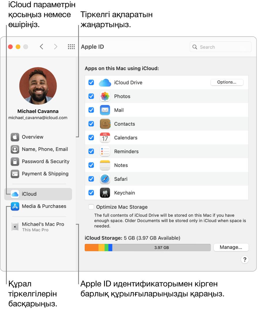 System Preferences терезесіндегі Apple ID тақтасы. Бүйірлік жолақтағы элементті тіркелгі ақпаратыңызды жаңарту, iCloud параметрін қосу немесе өшіру және Apple ID идентификаторыңызбен кірген барлық құрылғыларды көру үшін басыңыз.