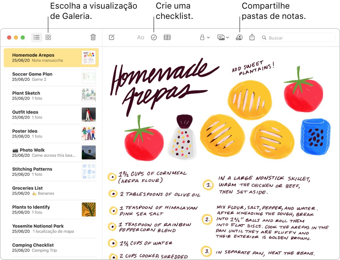 Uma janela do app Notas na visualização de Galeria, com chamadas para os botões Visualização de Galeria, Checklist e Compartilhar Pasta.