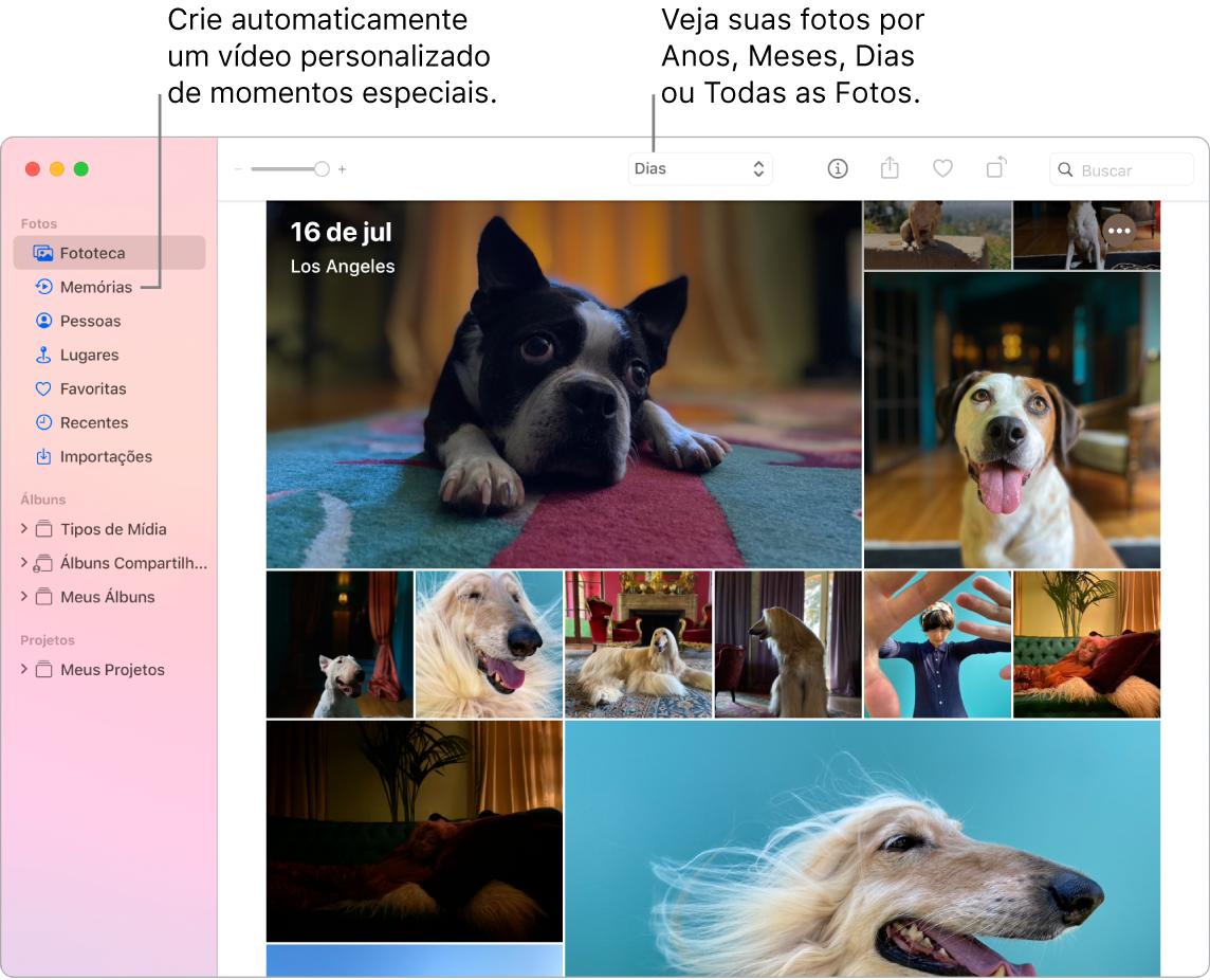Janela do Fotos mostrando o recurso Memórias na barra lateral esquerda e o menu local na parte superior, onde você pode ver as fotos do seu álbum por dia, semana, mês e ano.