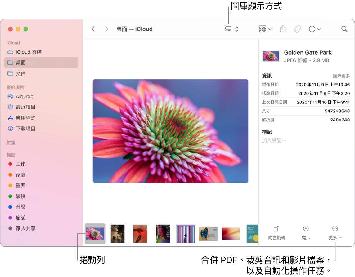 以「圖庫顯示方式」開啟的 Finder 視窗,顯示一張大型照片,下方是一列小照片(即捲動列)。旋轉、標示等功能的控制項目位於捲動列右方。