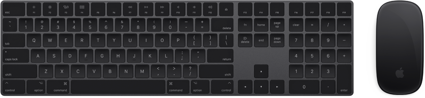 The MagicKeyboard with Numeric Keypad and MagicMouse 2, which come with your iMacPro.