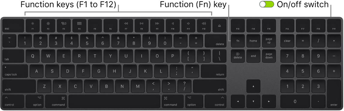 MagicKeyboard showing the Function (Fn) key in the bottom-left corner and the on/off switch in the upper-right corner of the keyboard.