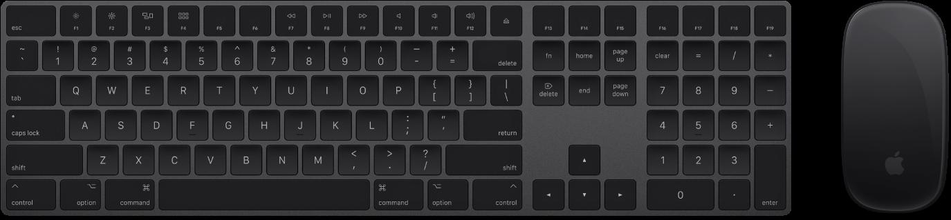 Het MagicKeyboard met numeriek toetsenblok en de MagicMouse2, meegeleverd bij je iMacPro.