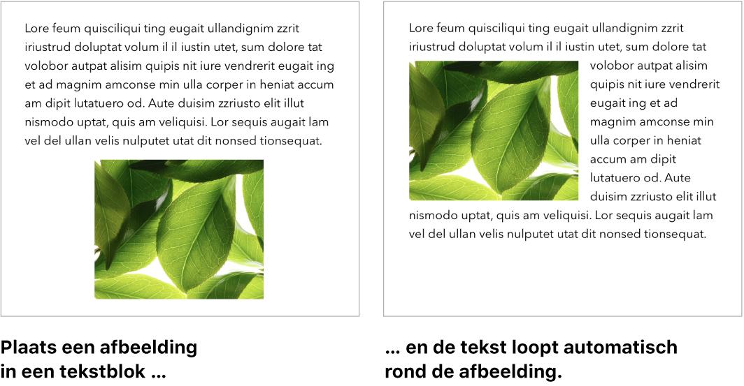 Een Pages-venster waarin je ziet hoe de tekst rond de afbeeldingen is geplaatst.