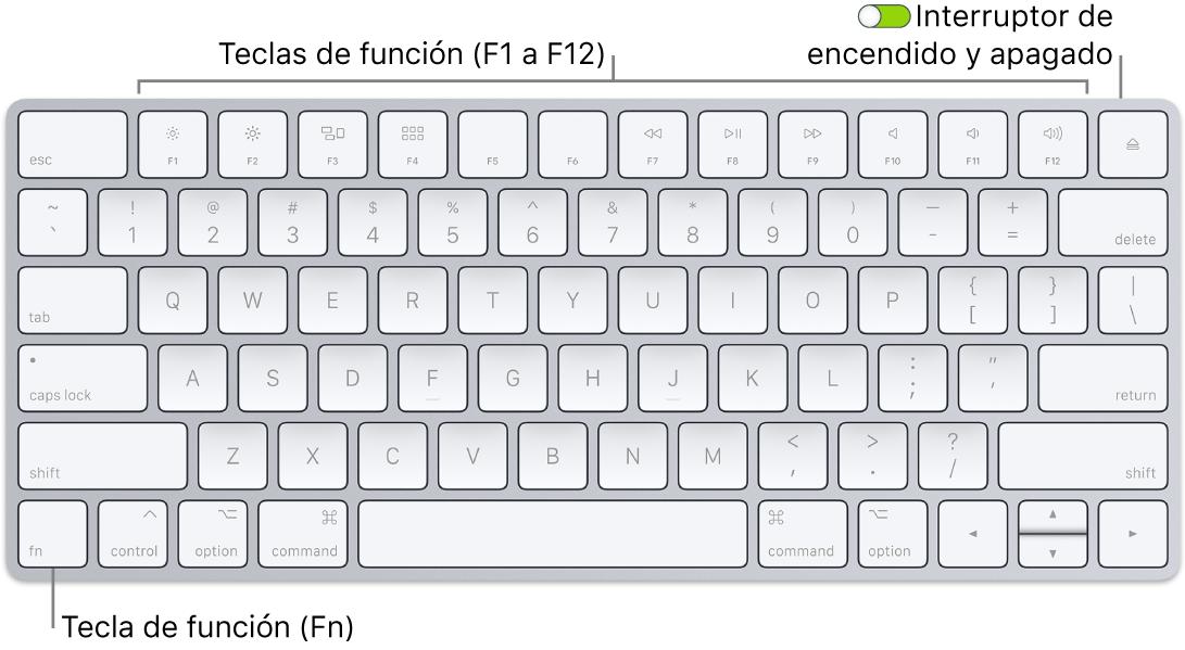 Teclado MagicKeyboard de mostrando la tecla de función (Fn) en la esquina inferior izquierda y el botón de encendido/apagado en la esquina superior derecha del teclado.