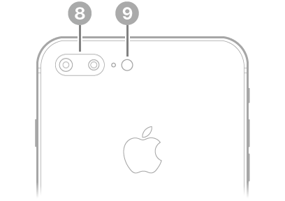 The back view of iPhone 8 Plus.