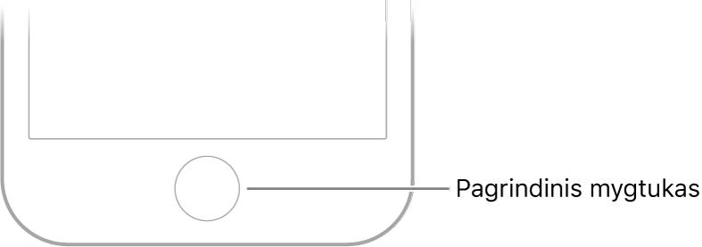"""""""iPhone"""" apačioje pateiktas pradžios mygtukas."""