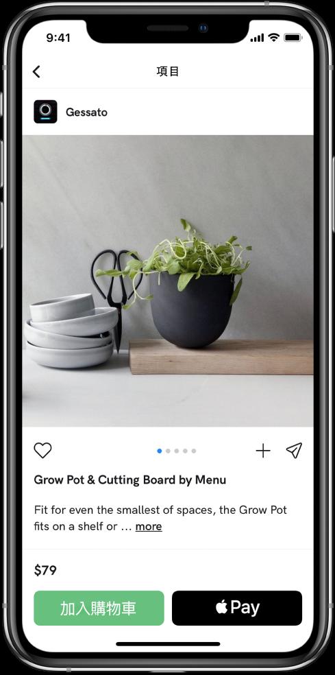 App 顯示付款畫面,包含「用 Apple Pay 購買」按鈕。