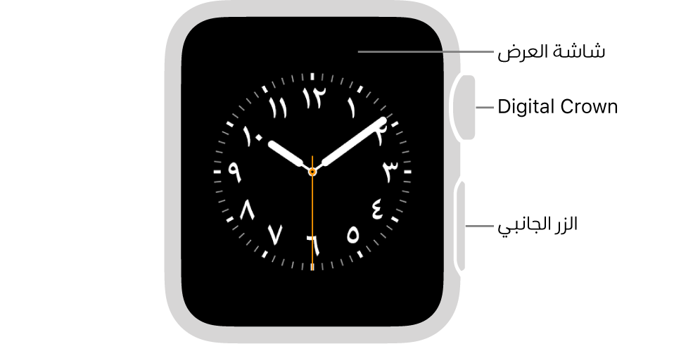 الجزء الأمامي من AppleWatchSeries3 وتظهر به شاشة العرض التي تعرض واجهة الساعة وDigitalCrown والزر الجانبي على جانب الساعة.