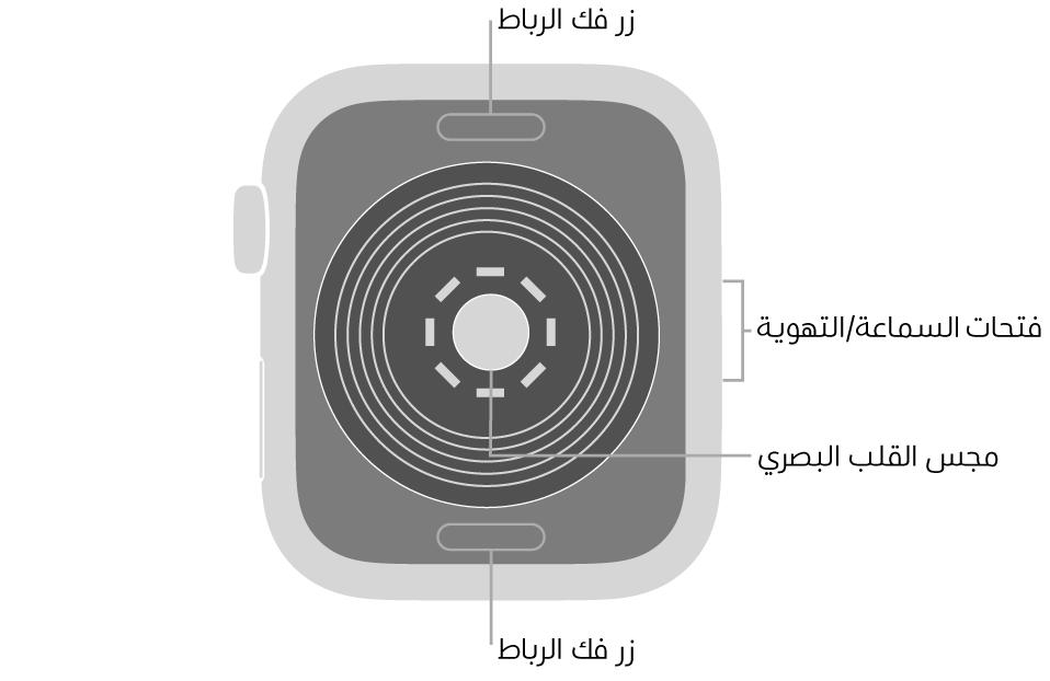 الجزء الخلفي من AppleWatchSE ويظهر به زرا تحرير الرباط في الأعلى والأسفل ومجس القلب الكهربائي في المنتصف وفتحات السماعة/التهوية على الجانب.