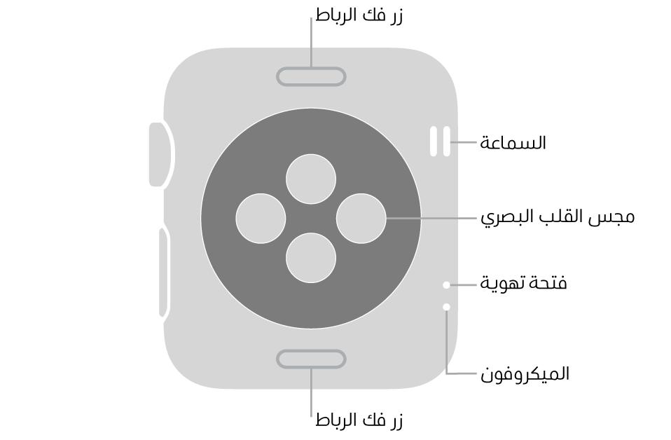 الجزء الخلفي من AppleWatchSeries3 ويظهر به زرا تحرير الرباط في الأعلى والأسفل ومجس القلب الكهربائي في المنتصف وفتحات السماعة والتهوية والمكيروفون من أعلى إلى أسفل بالقرب من الجانب.