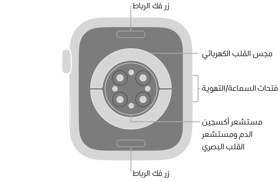 الجزء الخلفي من AppleWatch Series6 ويظهر به زرا تحرير الرباط في الأعلى والأسفل ومجس القلب الكهربائي ومستشعر القلب البصري ومستشعر أكسجين الدم وفتحات السماعة/التهوية على الجانب.