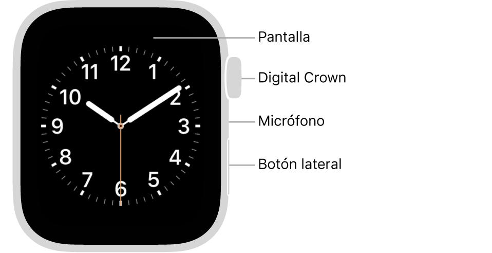 En el frente del AppleWatch Series6 se muestra la pantalla con la carátula y, en orden descendente en un lado del reloj, se ve la corona DigitalCrown, el micrófono y el botón lateral.