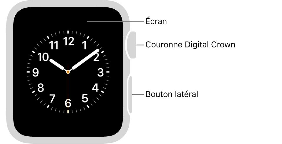 L'avant de l'AppleWatch Series3, avec l'écran affichant le cadran, et sur le côté de la montre la couronne DigitalCrown et le bouton latéral.