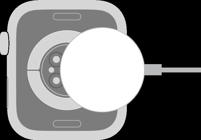 הצד הקעור של כבל הטעינה המגנטית של ה‑AppleWatch נצמד אל גב ה‑AppleWatch באופן מגנטי.