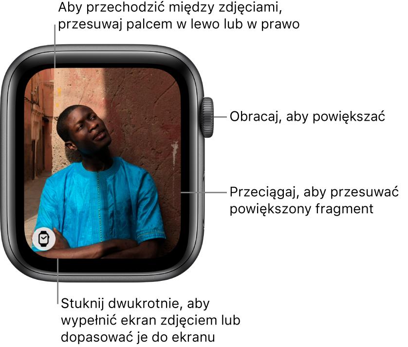 Po wyświetleniu zdjęcia możesz: obracać Digital Crown, aby powiększać lub pomniejszać; przeciągać, aby przesuwać powiększony fragment zdjęcia; stukać dwukrotnie, aby przełączać między wyświetlaniem całego zdjęcia iwypełnianiem nim ekranu. Aby przechodzić między zdjęciami, przesuwaj palcem wlewo lub wprawo. Stuknij wprzycisk Tarcza zegarka, znajdujący się wlewym dolnym rogu, aby utworzyć tarczę ze zdjęcia.