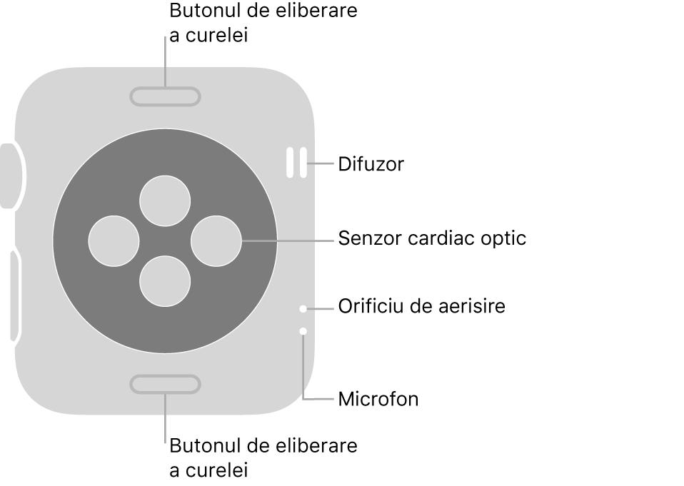 Spatele modelului AppleWatch Series3, cu butoanele de eliberare a brățării în partea de sus și de jos, senzorii cardiaci optici în mijloc și difuzorul, orificiile de ventilare și microfonul de sus până jos, lângă partea laterală.