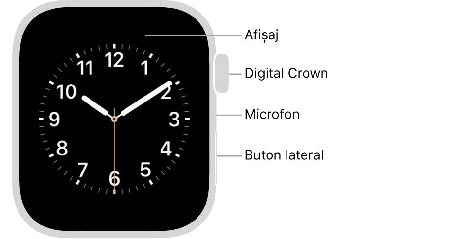Partea frontală a dispozitivului AppleWatch Series6, prezentând pe afișaj cadranul ceasului și coroana Digital Crown, microfonul și butonul lateral, de sus până jos, pe partea laterală a Watch-ului.