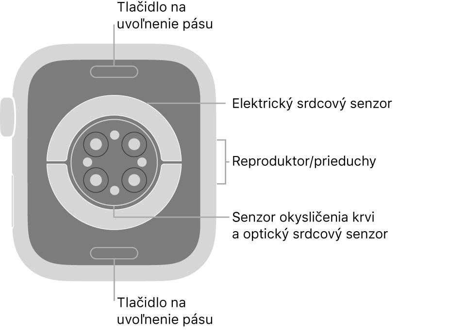 Zadná strana hodiniek Apple Watch Series 6. Navrchu anaspodku sa nachádzajú tlačidlá na uvoľnenie remienka. Vstrede sú umiestnené elektrické srdcové senzory, optické srdcové senzory asenzory saturácie kyslíkom anaboku reproduktor/prieduchy.