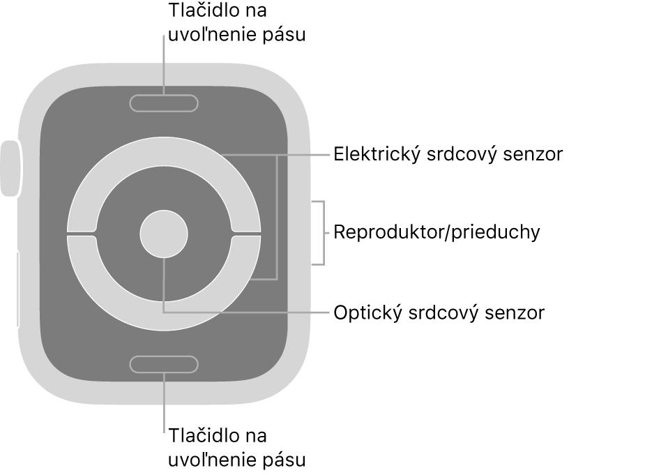 Zadná strana hodiniek AppleWatch Series4 aAppleWatch Series5. Navrchu anaspodku sa nachádzajú tlačidlá na uvoľnenie pásu. Vstrede sú umiestnené elektrické srdcové senzory aoptický srdcový senzor anaboku reproduktor/prieduchy.